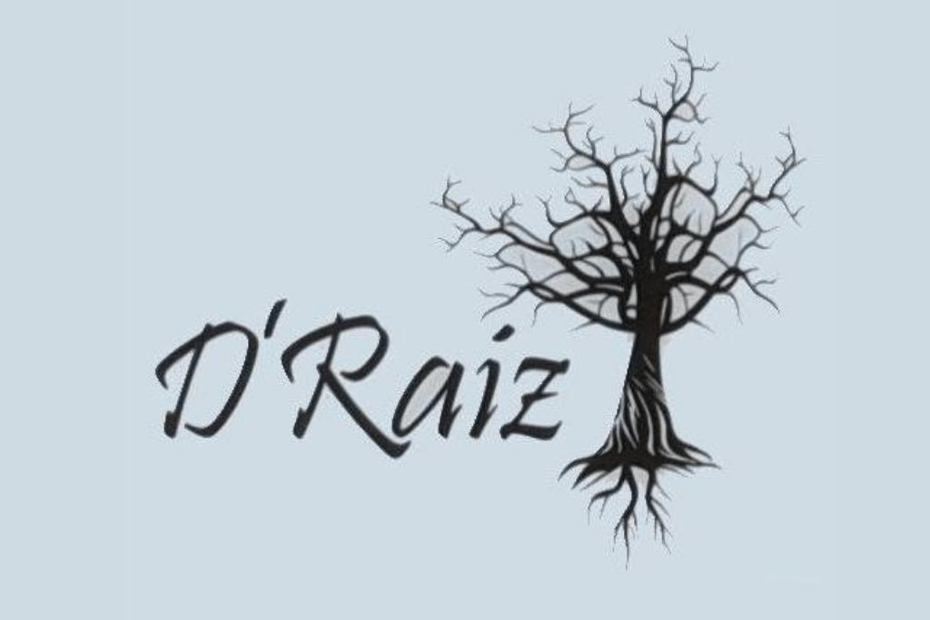 DRAIZ_1